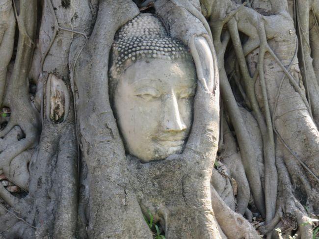 東南アジア:タイ旅行<アユタヤ>・・・