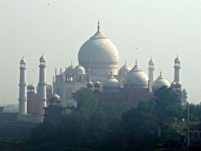 12月2日、今日は印度旅行の一番の目的タージ・マハルを見学します。<br />期待以上の白亜の霊廟、大理石に宝石や貴石を散りばめた殿堂です。<br /> 造営したのは、ムガール帝国最盛期の王、第五代シャー・ジャハーン。最愛の妃の為に帝国の財力を注ぎ込み、22年の歳月を注いで造りました。<br /> 特にその外形の美しさには目を見張ります、期待以上に素晴らしく目に入った瞬間思わずオーと唱えますが後が続きません、しばし見とれてしまいました。<br /> 後から訪ねたアグラ城(後年シャージャハーンが息子により幽閉された城)から見るタージ・マハルはこれまた素晴らしく、真珠の輝きに例えられています。<br />(この目で見るのと、写真では100倍以上の開きがあります)<br /> それではタージ・マハルとアグラ城スタートです。<br /><br />        表紙はアグラ城から見たタージ・マハル