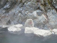SNOW MONKEY で有名な地獄谷野猿公苑へ