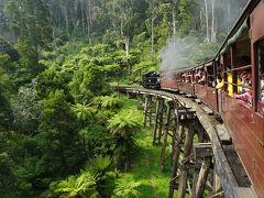 【滞在編14-3】パッフィンビリー鉄道に乗ってみた ~ワンワールド世界一周航空券で2ヶ月の旅