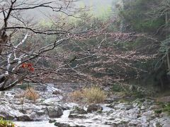 また大谷山荘で素晴らしい時間を過ごしました