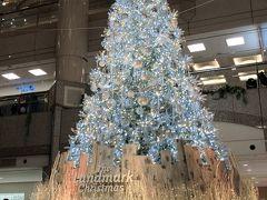 2019年 クリスマスツリー(状)集