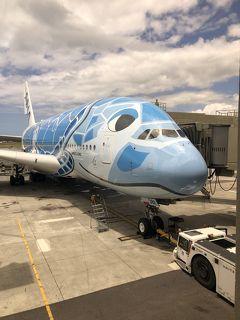 【2019ハワイ】早朝ワイキキ散歩/デニーズで朝食/A380フライングホヌで帰国【8日目】