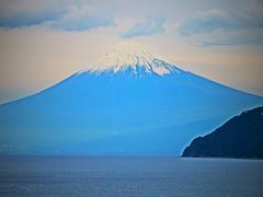 堂ヶ島→土肥→大瀬崎 伊豆西海岸~富士山を望む ☆千葉交通/バス左側-車窓風景