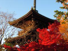 2019京都の紅葉⑥ 「南禅寺」「哲学の道」「真如堂」の紅葉