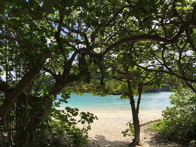 石垣島って行ったことある?<br />僕はダイビングで行ったことがあるんだ。とっても海がきれいで、雰囲気もすごくいいんだ。のんびりしていて…いつか一緒に行こうね。<br /><br />そう言ってコツコツと貯めていた「石垣島貯金」。<br />それは私の引っ越し代になりましたが、もったいなくて手をつけていませんでした。<br /><br />バディがいなくなった今、ダイビングはできないけれど、石垣島にはきてみたかった。<br /><br />そんなこんなで二日目です。