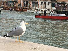 人生に旅という楽しみを♪2019イタリア ミラノからイタロで行くベネチア街歩き