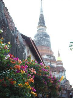 女一人旅で初めてのバンコク 4泊5日 2日目 線路市場&水上マーケット&アユタヤおひとり様専用ツアー