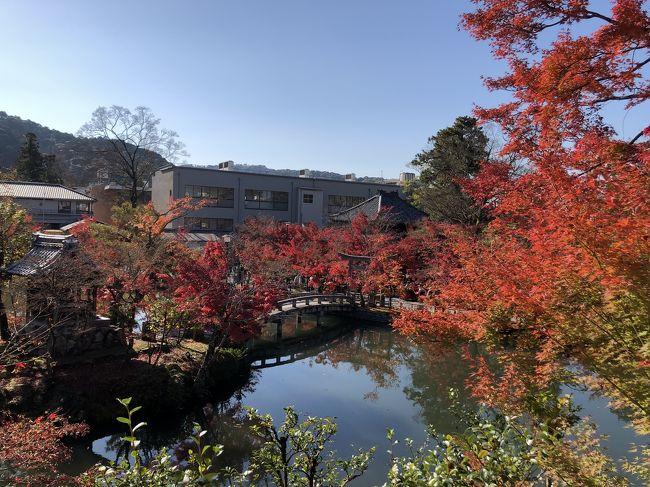 紅葉の時期に京都に行けました☆<br />ほんの少しピークは過ぎていたようですが充分赤々とした紅葉を楽しみました♪<br />京都で紅葉といえば、の永観堂、南禅寺です!