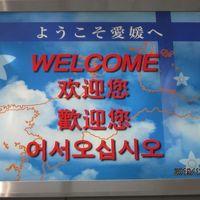 10回目の夫婦旅・�再見台湾・謝謝台湾