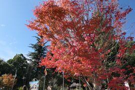 秋の山中湖/河口湖♪ Vol.1 ☆河口湖:紅葉の河口湖畔♪
