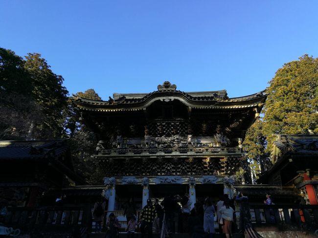 年末の12月29日(日)と30日(月)で日光と宇都宮に行ってきました。<br />新宿からJR湘南新宿ラインの快速に乗り1時間40分ほどで宇都宮に到着。<br />そこから日光線に乗り換えて48分ほどでJR日光駅到着です。<br />駅からはバスで日光東照宮の近くの神橋バス停で下車し東照宮に向かいました。この時期ですので境内はさほど混雑することもなく参拝出来ました。<br />翌日は駅ビル内にある餃子店みんみんで餃子を食べて帰りました。<br />ホテルはJR宇都宮駅に近いリッチモンドホテル宇都宮駅前を利用しました。<br /><br />