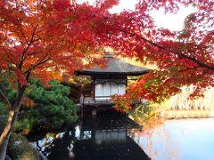 2019紅葉めぐりの旅4 根来寺と和歌山城紅葉渓庭園