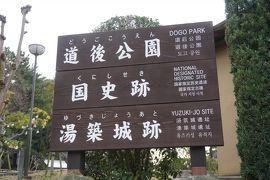 (9)日本100名城 80 湯築城
