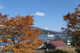 秋の山中湖/河口湖♪ Vol.11 ☆山中湖:「旭日丘湖畔緑地公園」ばらつきのある紅葉♪