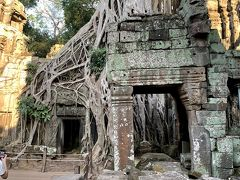 天空の城ラピュタの世界!廃墟寺院に大樹が生茂るタプローム(アンコール遺跡群)