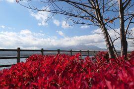 秋の山中湖/河口湖♪ Vol.13 ☆山中湖:「長池親水公園」雲に隠れた富士山♪