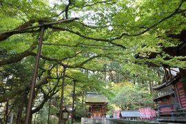 秋の山中湖/河口湖♪ Vol.15 ☆富士吉田:「北口本宮冨士浅間神社」庭園を愛でる♪