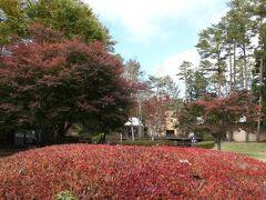 秋の山中湖/河口湖♪ Vol.20 ☆河口湖:「レジーナリゾート富士」晩秋の高原を満喫♪