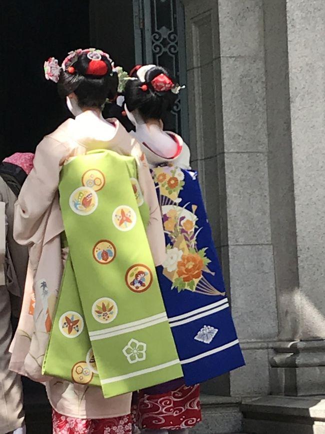 お稽古の展示会とパーティーがあり、10月の初めに京都へ。<br />宝の持ち腐れの着物は京都で着ると決めてから着付け集中復習で挑み、とても苦しかったけれども、綺麗なものがたくさん見られて眼福でした。<br /><br />口福<br />朝食 丹<br />おやつ 鍵善良房<br />お弁当 点邑<br />おやつ 粟餅 澤屋<br />お土産 とようけ屋