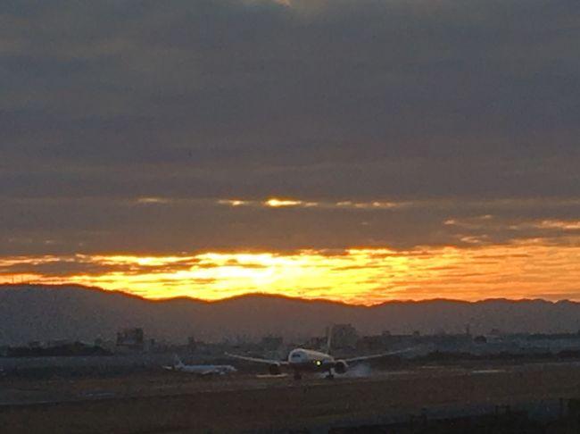 2020年大阪、初日の出は7:05。<br />初めて伊丹スカイパークへ行って来た!<br /><br />7:00に現地到着。<br />生駒山から顔を覗かせたのが7:15頃。<br />30分前後明るくなっていく空を楽しめました。<br /><br />思った以上に近くで飛行機を見られて興奮♪<br />足冷えた~って言ってた人が多かった。<br />カメラを持つ手もガチガチ、防寒対策を忘れずに!
