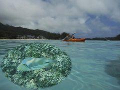 25周年記念 クック諸島 Day3-2(朝食を取ったら、ムリラグーンでシュノーケリング)
