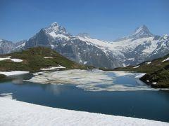 灼熱のGrindelwald★あかんたれ2人旅★Bachalpseeは天然クーラー天国