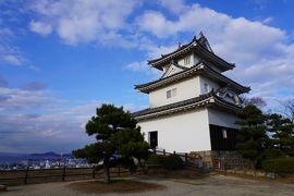 (11)日本100名城 78 丸亀城