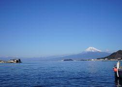 2020.1 あわしまマリンパーク~沼津・富士山