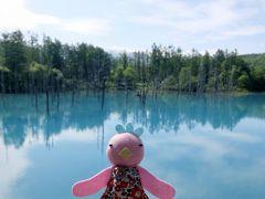 「そうだ!夏の北海道へ行こう。」ってことで行ってきました♪2019年7月