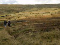 秋のイングランド カントリーサイドを歩く 11 ヨークシャーデイルズ(3)ハワース ムーアを歩く