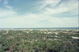 Cape Cod, MA, 1978.