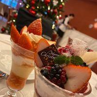 異国気分のクリスマス東京散歩(パリ・ウィ—ン・ブルガリア・ルーマニア・リヒテンシュタイン)