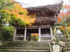 2019紅葉めぐりの旅5 高知・竹林寺と佐川、土佐三名園を巡る旅