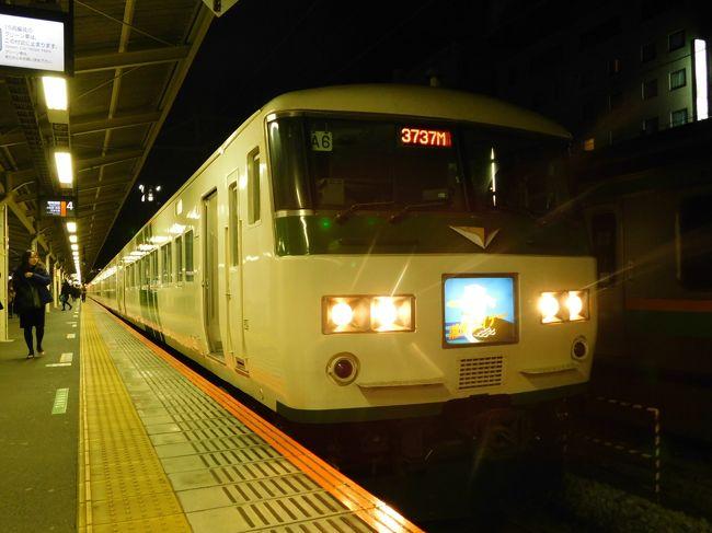 2019北東パスで旅納め!列車100本乗れるかな?vol.1(「湘南ライナー」で東海道本線編!)