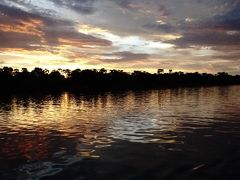 南部アフリカの旅①_準備~移動編&ザンベジ川クルーズ