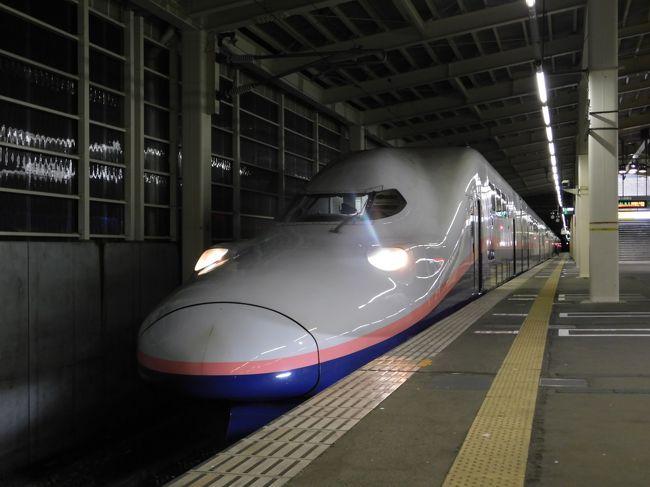 2019北東パスで旅納め!列車100本乗れるかな?vol.3(「Maxたにがわ」で上越線編!)