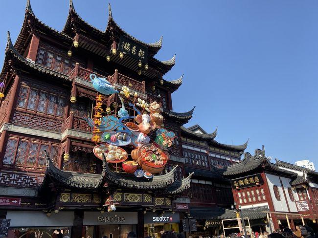 初めての海外での年越しです。<br />メンバーはいつもと同じく、私、夫、息子2人(7歳&3歳)。<br /><br />旅行の前半は上海ディズニーランド、後半は上海の街をウロウロの旅程です。<br />ディズニーではトイストーリーホテルに2泊、街では人民広場駅近くのロイヤルメリディアン上海に2泊しました。<br /><br />この旅行記は上海街歩き編の続きです。<br /><br />☆4日目<br />人民広場周辺をウロウロ<br />泰康湯包館<br />上海市第一食品商店<br />上海雑技「ERA~時空の旅」<br /><br />☆5日目<br />南翔饅頭店<br />豫園<br />寧波湯団店<br />レゴストア<br />上海タイムズ(サンリオ)<br />泰康湯包館<br />浦東国際空港(17:25)