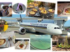 2019-2020 メルボルン周辺(1)シンガポール航空ビジネスクラスで初オーストラリア 出発と到着編