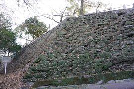(12)日本100名城 76 徳島城
