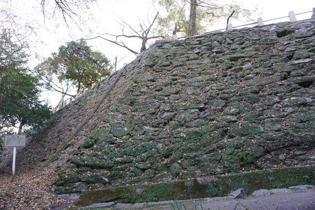 (13)日本100名城 76 徳島城