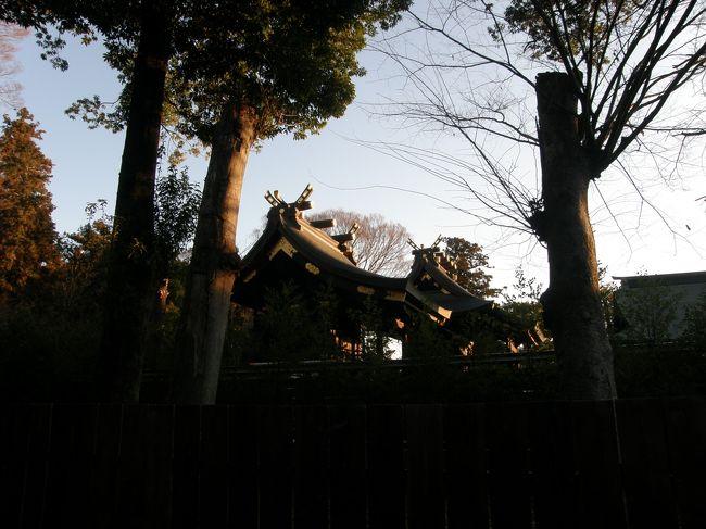 2020年、年頭の早朝散歩はコースを鷲宮神社に参拝を兼ねて歩いた。<br />