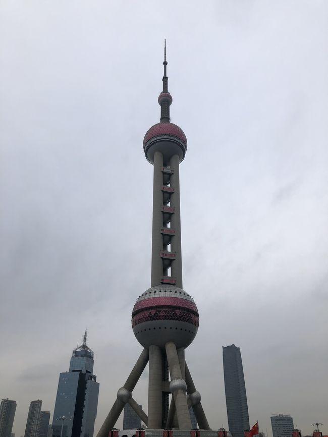 2020 上海 子連れ旅 2-3日目(最終日)