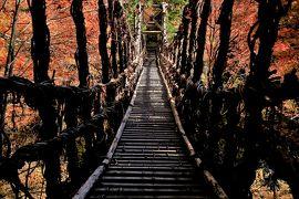 日本の絶景を求めて徳島・高松・岡山へ (1)紅葉の奥祖谷かずら橋