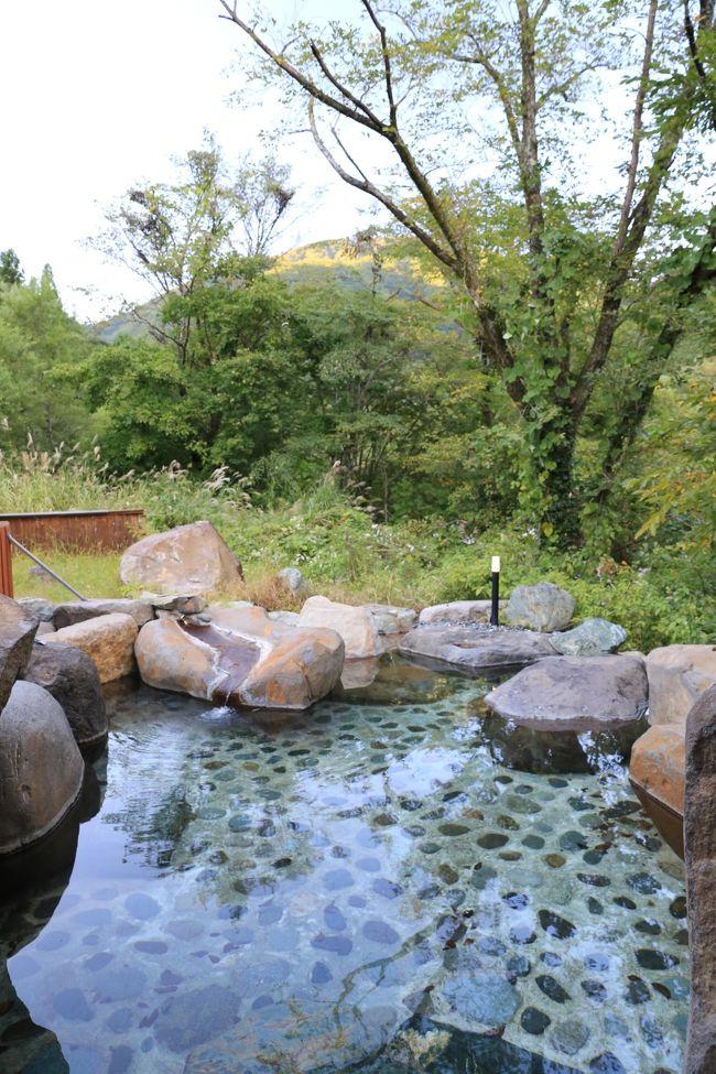 こんばんは。前回に続いて、今回も「伊東園ホテルズ」の温泉宿泊記を紹介。先日紹介した「老神温泉 山楽荘」で下車せずにバスに乗っていくと到着する「湯檜曽温泉 ホテル湯の陣」が今回の目的地です。しかし今回は日曜出発で休前日ではない為、期間限定で宿泊者ならなんと「無料」で東京や埼玉のターミナルから、バスで温泉まで連れて行ってくれます。<br /><br />そんな美味しい話、利用しない手はありません!ということで川越駅にやって来ました~