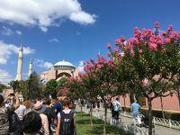 Touristanbulに参加�[Tour4]!〜ターキッシュエアラインズ・乗継ぎ〜