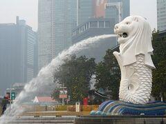 動物ずくめのシンガポールひとり旅 8 交通規制で大慌て の部