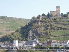 美味しいワインと古城を巡る旅アルザス・ネッカー・マイン・ライン14日Ⅺ