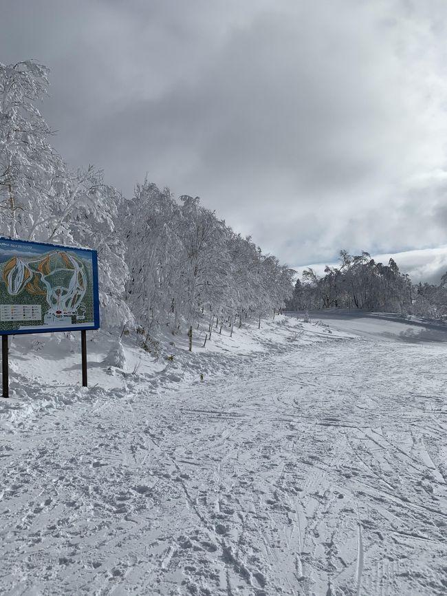 2020年の初滑りはカムイスキーリンクスへ!<br />今年の北海道は雪が少なくて、1月に入ってもオープンできないスキー場が何か所もあるそうです。<br />カムイリンクスはオープンしていましたが、閉鎖されたコースが何か所もありました。<br />それでも天気、ゲレンデ状態はともに良好!<br />初滑りを楽しむことができました?