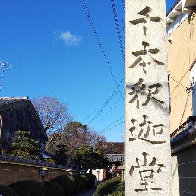 毎年恒例となりましたが、成人の日の三連休に京都を旅行してきました。<br />二日目には滋賀にも足を伸ばしました!<br />素敵な寺社を拝観して、素敵な旅となりました。<br />その記録です。